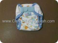 Cluebebe Coveria Petite Sea Animal