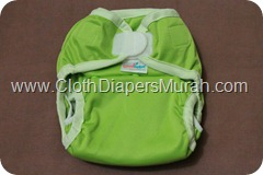 Cluebebe Coveria Petite Green