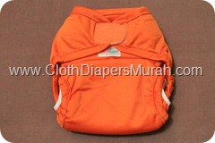 Cluebebe Coveria Petite Orange